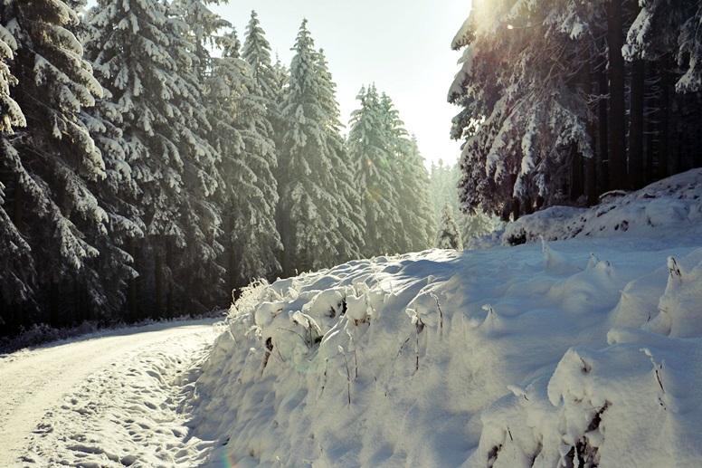 Verschneite Landschaften im Harz am Wurmberg