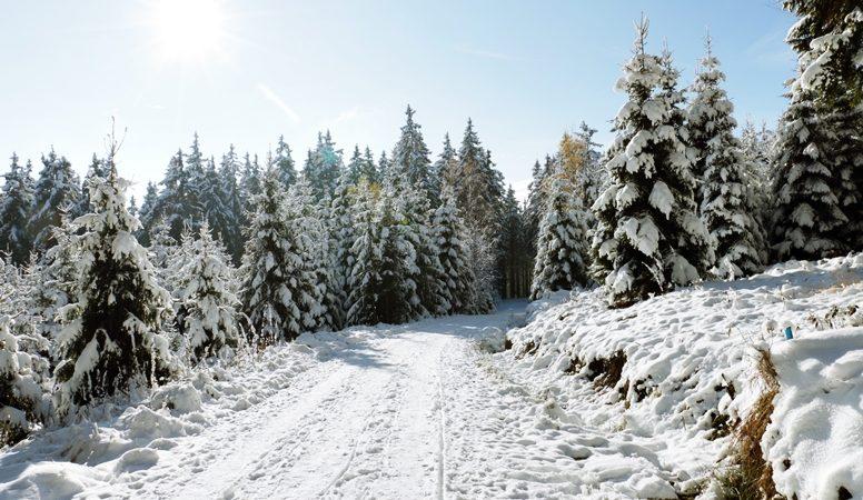Verschneiter Weg auf der Wanderung zum Wurmberg