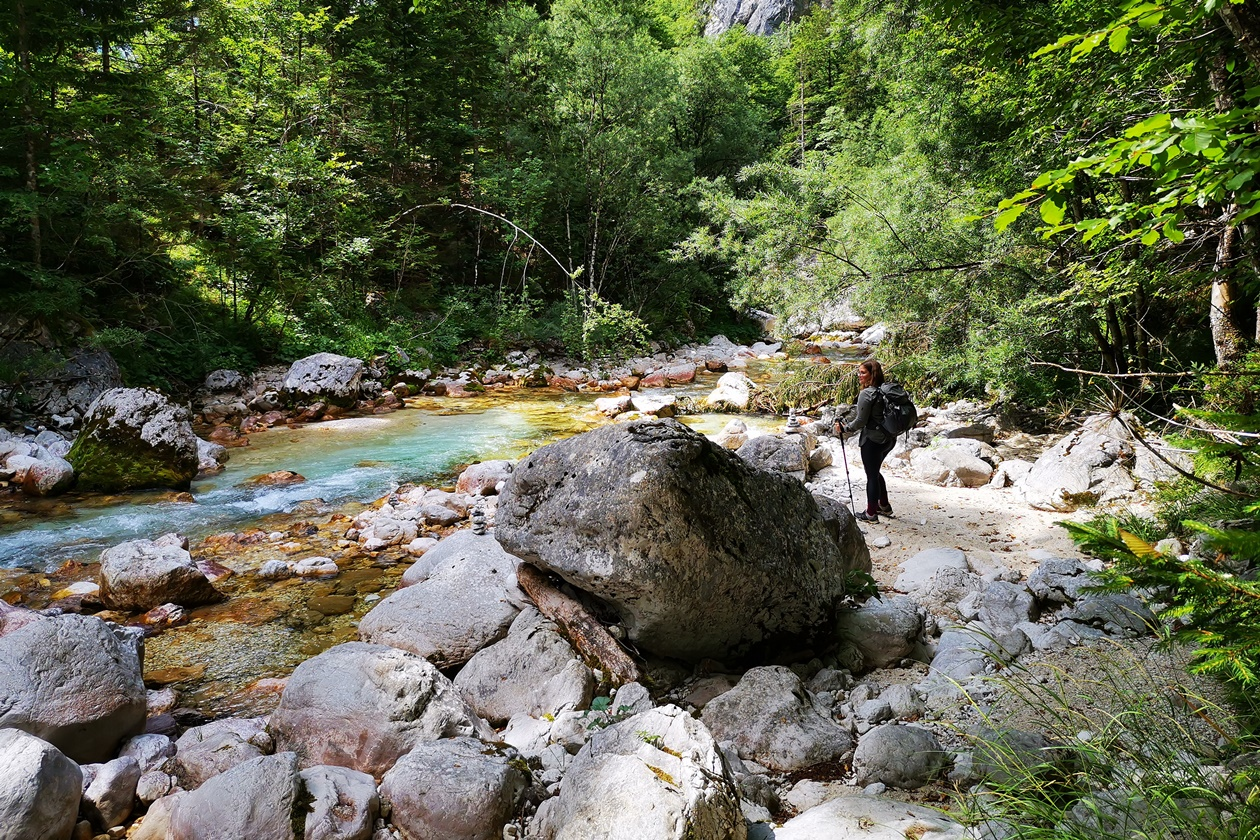 Rast am Ufer der Soča