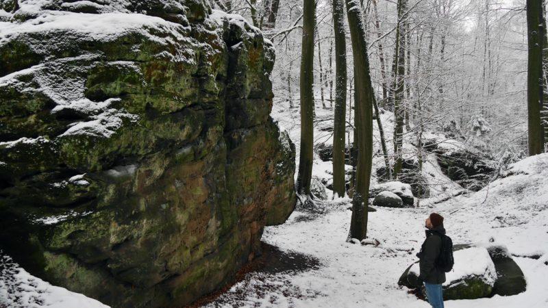 Ein Mensch der auf eine der Bodensteinerklippen blickt