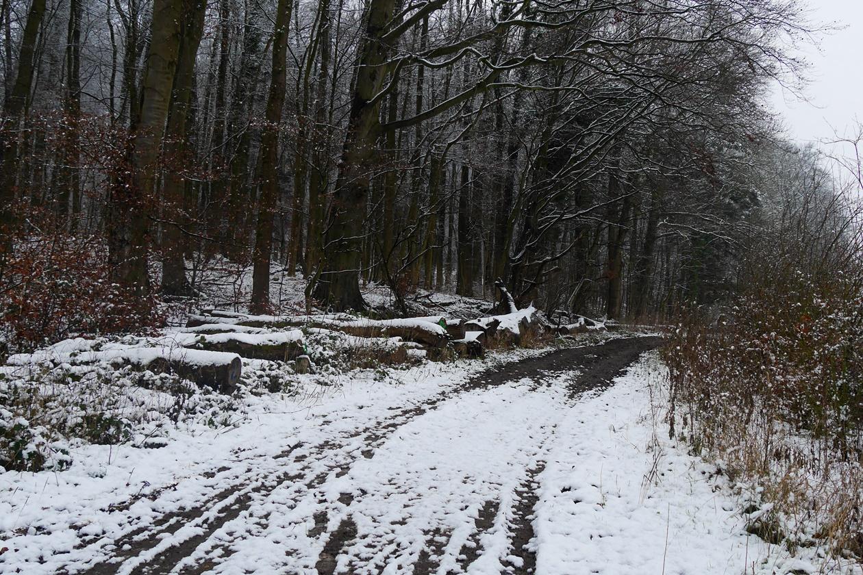 Wirschaftsweg oberhalb des Schloss Derneburg